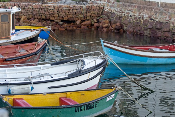Simon's Town Harbor Colorful Boats