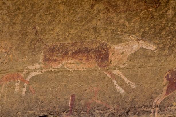 Bushmen Rock Art of an Eland